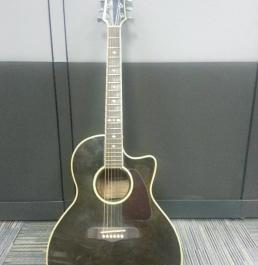 Fernando Acoustic Guitar with Built-in Tuner photo