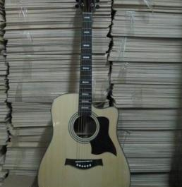 Acoustic Guitar SR. Size Thomson Spruce Top PROMO photo