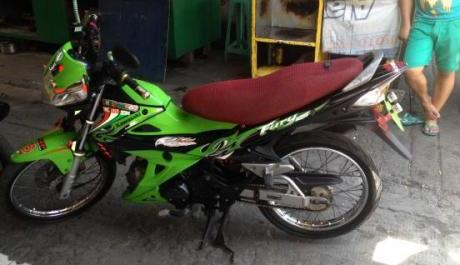 Kawasaki Fury 2010 photo