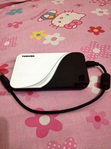 Toshiba External Harddrive 500GB photo
