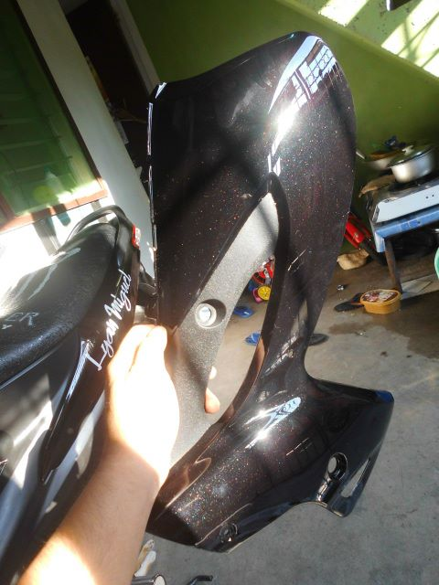 Raider J 110 Pro Clutch Leg Shield Left and Ritght photo
