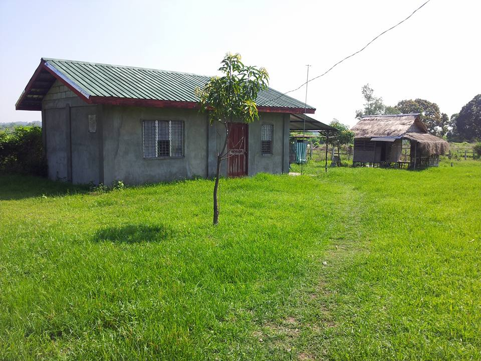 for sale house and lot photo