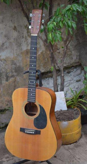 Aria acoustic guitar photo