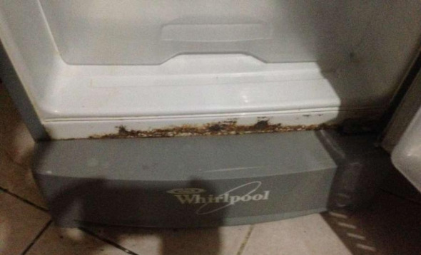 Whirlpool single Door Refrigerator image 3