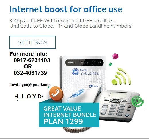 Internet Business Globe Broadband Connection photo