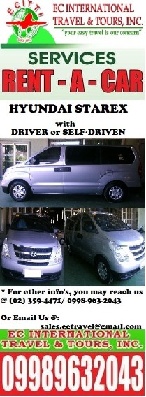 Hyundai Starex for RENT photo