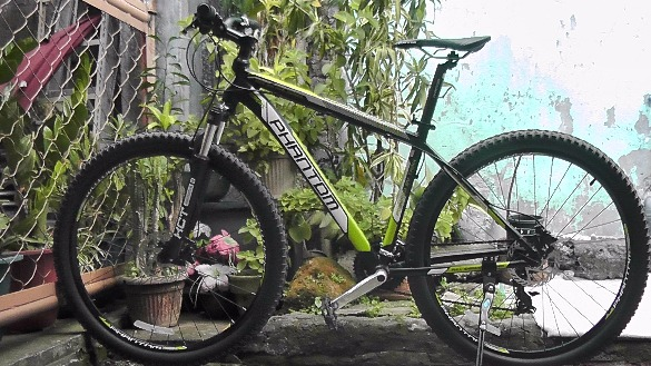 RUSH SALE: Mountain Bike size 29 photo