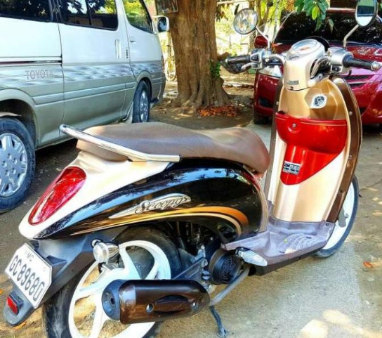 Honda Scoopy 2013 model image 4