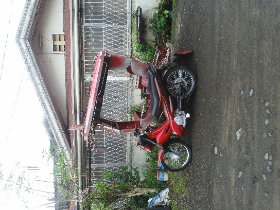 motorcycle with side car image 3