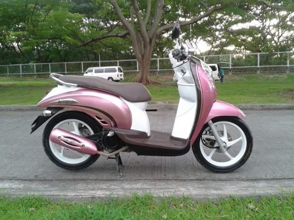 honda scoopy photo