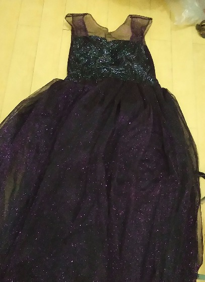 Gown and Disney Costume photo