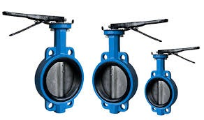 CAST IRON ( CI ) VALVES DEALERS IN KOLKATA image 1