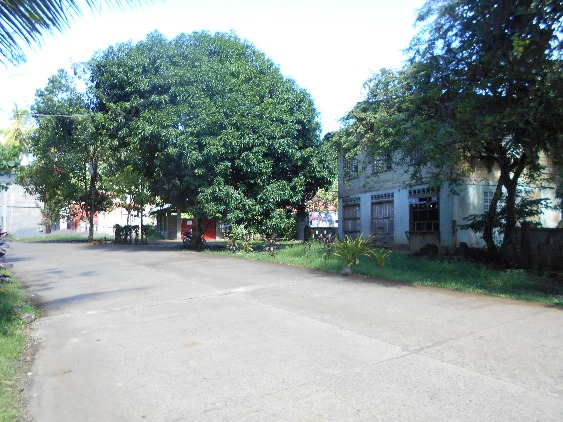 LOT FOR SALE (RESIDENTIAL) image 2
