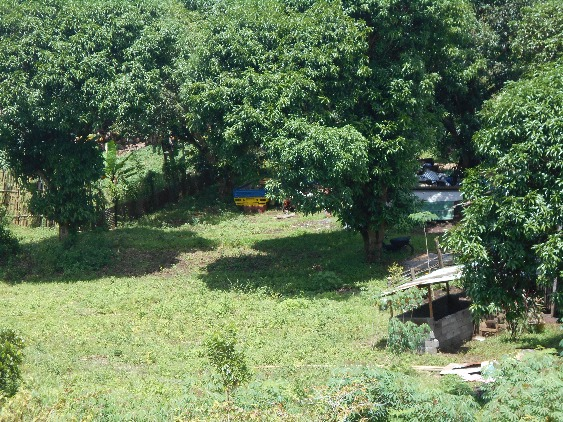 LOT FOR SALE (RESIDENTIAL/AGRICULTURAL) image 5
