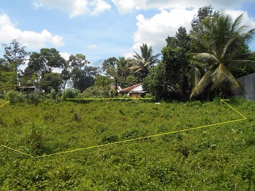 LOT FOR SALE (RESIDENTIAL/AGRICULTURAL) photo
