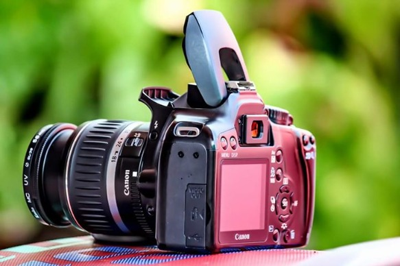 Canon EOS DsLR Good Photography photo