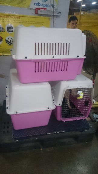 STRONG STURDY & DEPENDABLE PET CARRIERSFOR YOUR TRAVEL NEEDS image 3