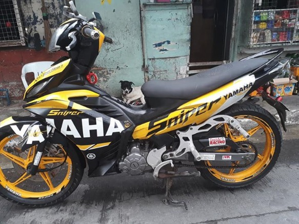 yamaha sniper MX 135 2012_2013acq photo
