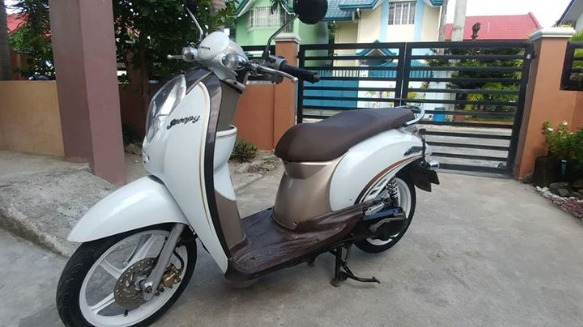 Honda scoopy  2011-2012 model photo