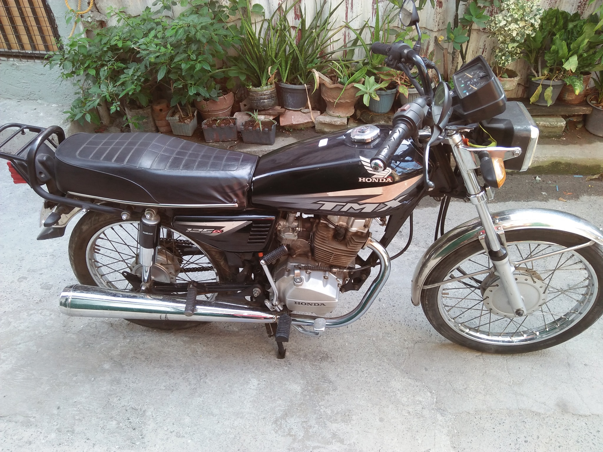 Honda Tmx alpha 125 photo