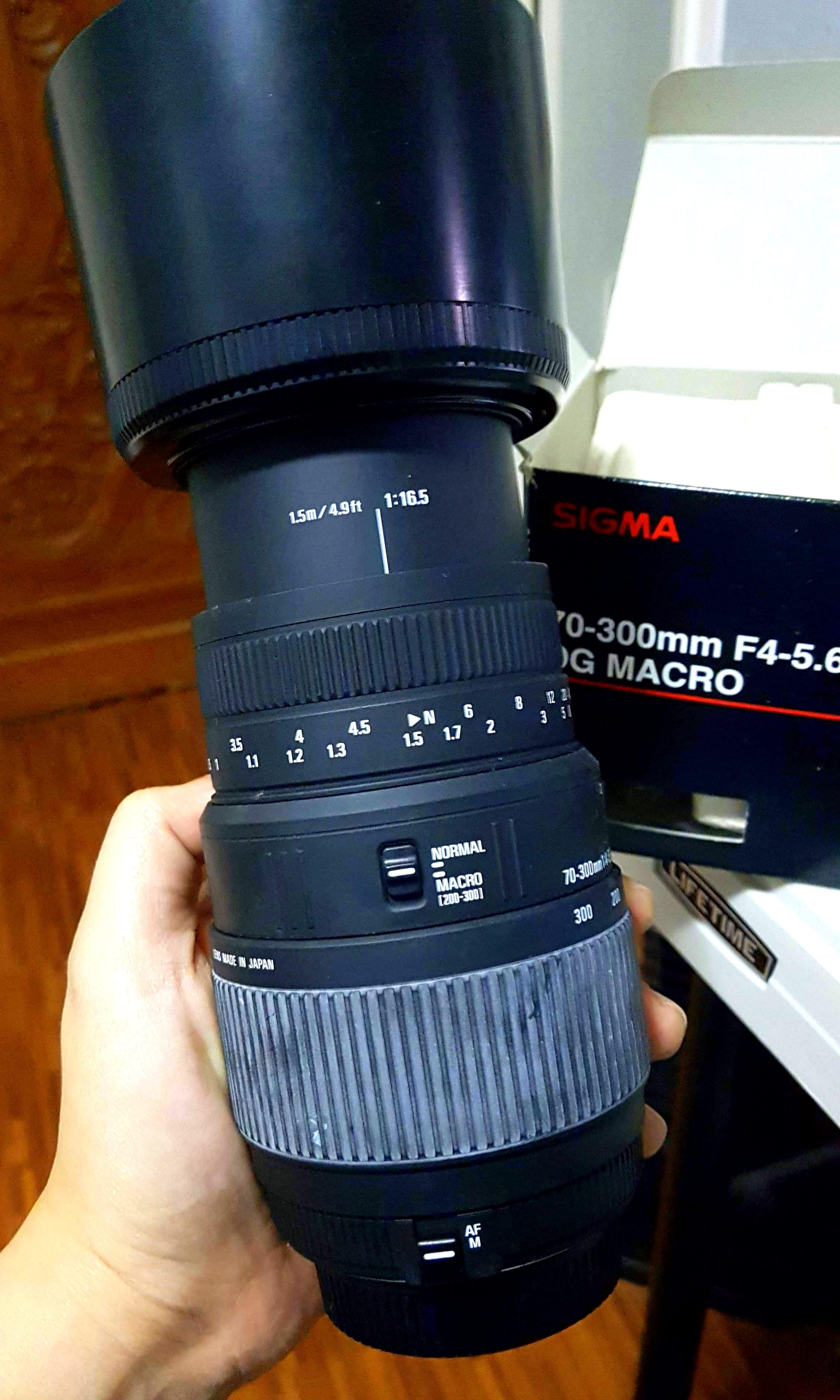 SIGMA 70-300mm F4-5.6 DG Macro photo